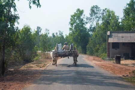 Image of a Bullock cart moving in a road captured from behind.
