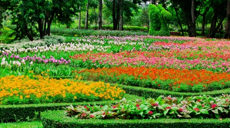 Colourful Flowerbeds Stock Photo