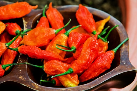 Spicy chili in the world