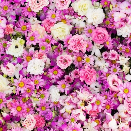 Belles fleurs fond de la scène de mariage Banque d'images - 25063450