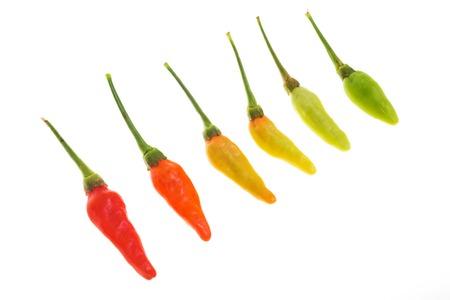 super hot:  pepper super hot at Kanchanaburi , Thailand