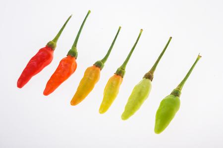 super hot: Karen pepper super hot at Kanchanaburi , Thailand Stock Photo