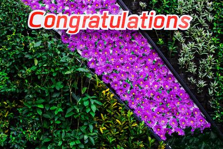 congratulate: Background foliage and flowers to congratulate.
