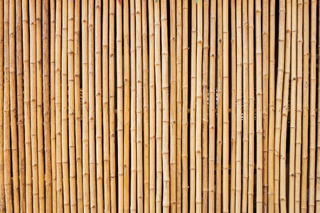 bamboo texture with natural patterns Standard-Bild