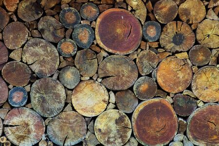 stacked up: Dry chopped firewood logs stacked up on top of each other in a pile