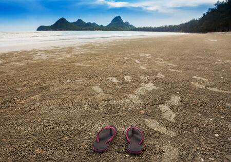 sandal tree: Flip-flop on sand beach in morning