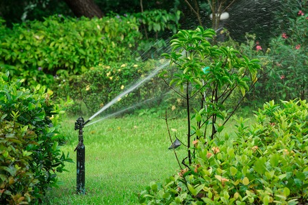 water sprinkler: Water Sprinkler in Garden Lawn on a sunny summer day
