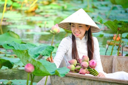 Vietnamese women are collecting the lotus at sunset. Stock Photo