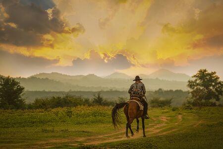 Silueta, vaquero, equitación, un, caballo, debajo, hermoso, ocaso Foto de archivo