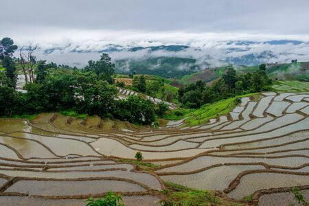 Beautiful landscape view of rice terraces and house at chiang mai , Thailand.