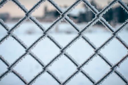 Frozen and covered with a thick layer of frost network of metal fencing. photo