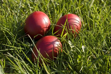 reg: Three red Easter eggs in the grass