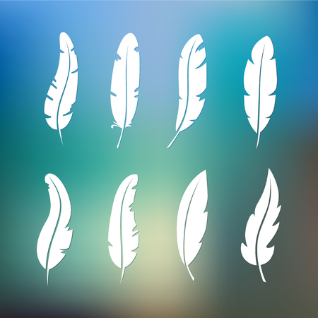 Different set feather vector icon isolated on white background. Collection for writing text and design. Graphic illustration
