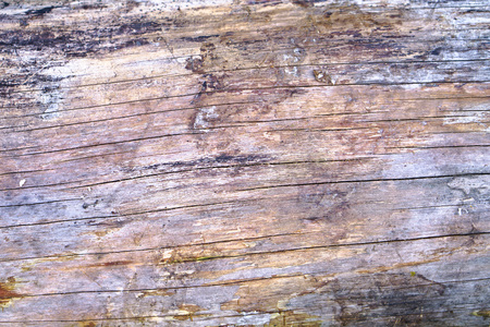 Dark old wood texture. Creative retro background. Stock Photo for design and wallpaper
