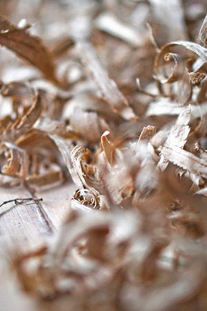 Beautiful carpentry background. Sawdust in focus and with a blurry image. Abstract composition for design. Stock photo.