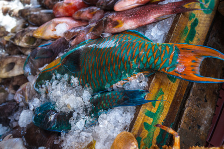 Various fish in the market near the sea, ocean. Old stalls with fresh marine life. Asia culture and traditions. Stock photo