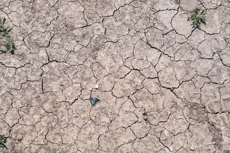 Background texture cracks on the ground. Drought is a desert region disaster. Stock Photo