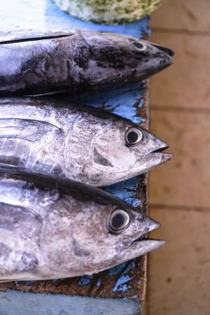 Fish market in Asia. Catching sea and ocean animals in the Indian Ocean. Tuna on shelves for sale. Exotic background Stock Photo