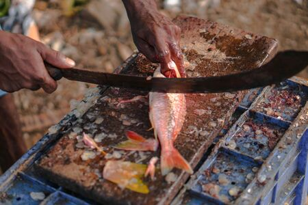 Sliced fish with a knife in the blood. big machete in fisherman's hand. Tuna on the market of Sri Lanka. Stock photos 写真素材 - 132106819