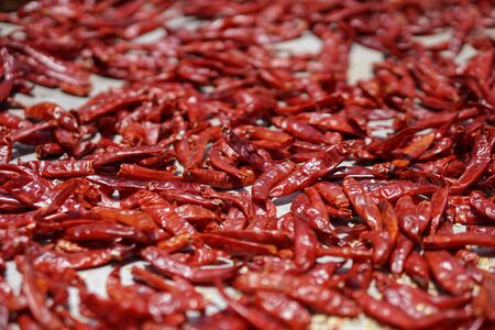 Dried red pepper. National food of Sri Lanka and India. Sale of pepper and spices. Stock photo