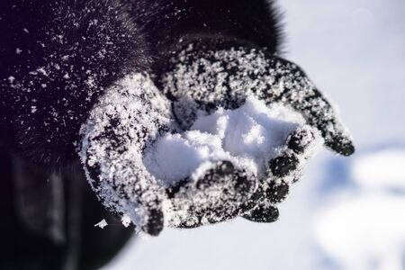 Snow-white snow on female hands. Black gloves with snowflakes. Christmas and New Year theme