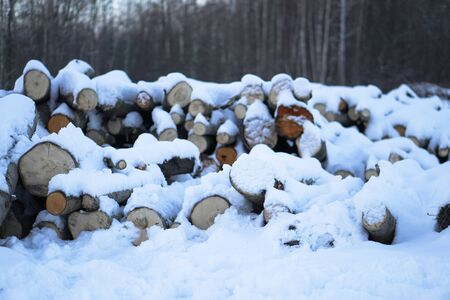 Winter landscape with harvesting firewood in the forest. Forest sawmill and logs covered with snow. Stock photo for design Stok Fotoğraf