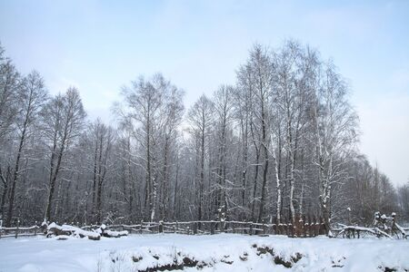 Winter landscape outside the city in the forest. Snowy fence in December. Christmas and New Year picture. Stok Fotoğraf
