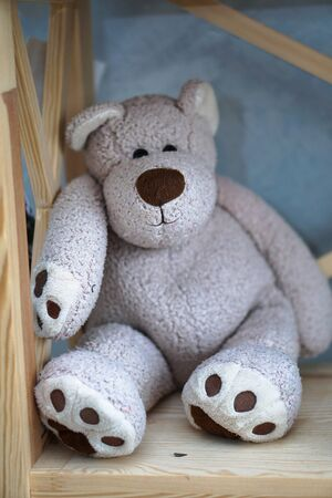 Beautiful teddy bear sits on a shelf in the New Year time. Decorative cute background for design 写真素材