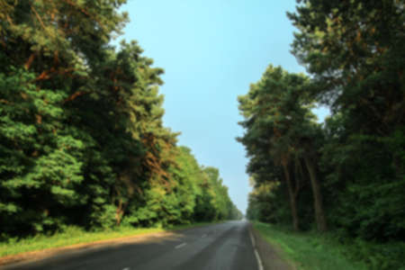 Road in the forest in defocus on the background of trees. Stock image for design. Фото со стока - 158267151