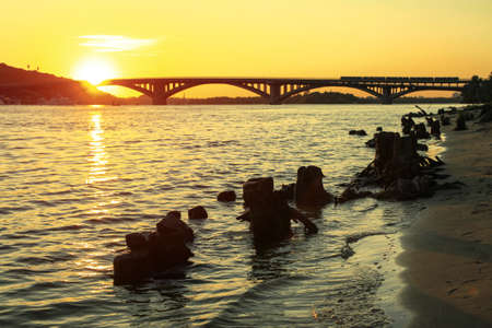 Driftwood in a river or lake against the background of the city and the bridge at sunset. Landscape with water and old stumps. Stock photo for design Banco de Imagens