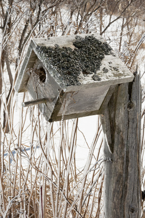 yarrow: Bird nesting box covered in ice after an ice storm. Background is snow covered and dead winter shrubs and yarrow and wildflowers Stock Photo