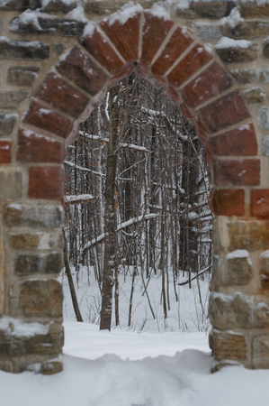 Gothic stone door way with maple trees in the snow. Snowing