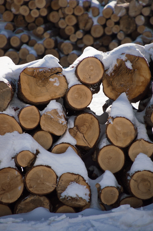 Stacked firewood lumber logs icovered in snow. Another stack of logs in the background behind. Stock Photo