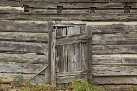 Weathered grungy old log cabin wall with old wooden door background wallpaper