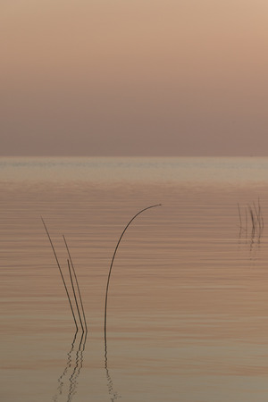 Peachy blue hues on a still calm freshwater lake. Perfect background or wallpaper Фото со стока