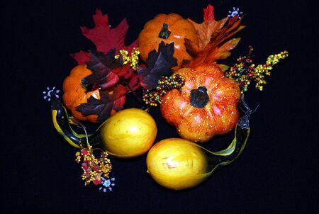 autumn arrangement: Autumn Arrangement Stock Photo
