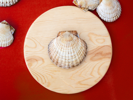 Scallop cockleshell on a round wooden board on a red background Standard-Bild - 117117604