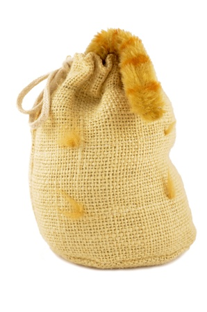 Bag with a cat inside and a tail with outside Stock Photo