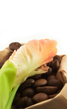 The roasted coffee grains in paper bags with flower