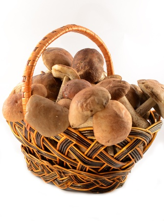 Rural wattled basket filled with autumn mushrooms