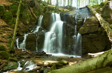 Waterfall falling from the cliffs in the wild forest