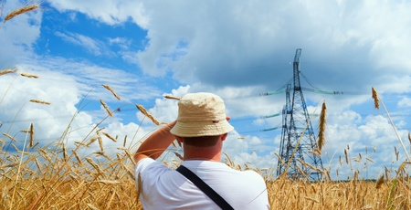 People in the field, looking into the distance