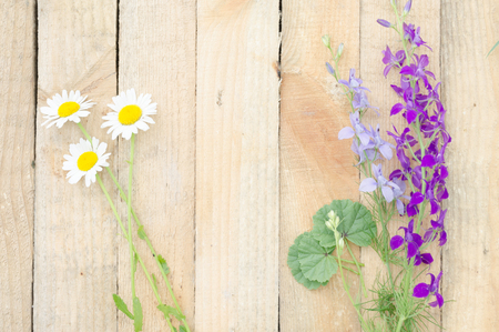Wild flowers on wooden boards Stock Photo