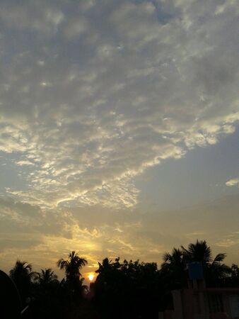rising sun: The rising Sun