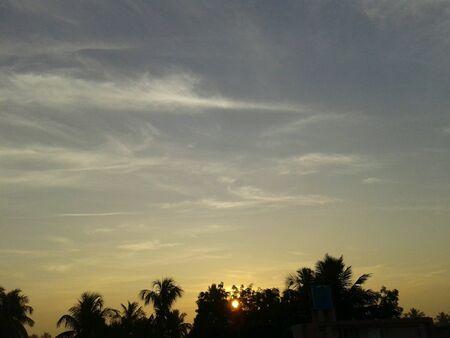 sol naciente: El sol naciente