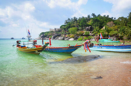 Longtail boats on the beach and jungle of koh tao in the gulf of thailand