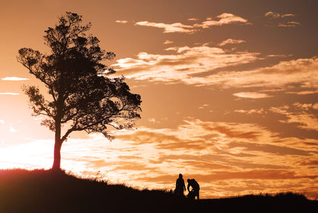 couple on the romantic lookout are watching sunset next of the lonely tree photo