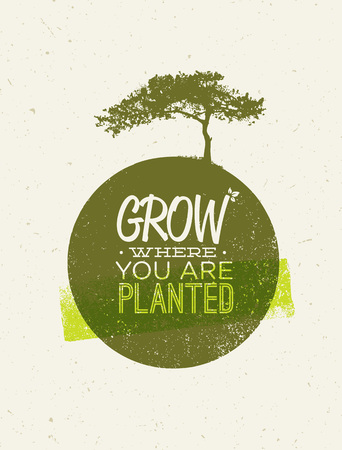 Grow Where You Are Planted Motivation Quote on Recycled Paper Background
