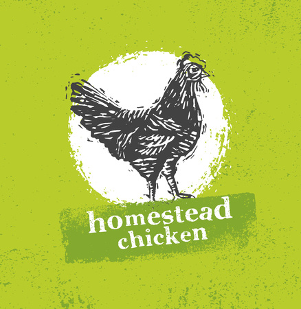 Homestead chicken locally grown organic food Illustration