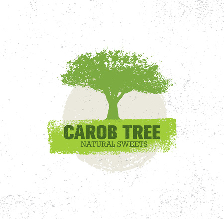 Carob Tree Natural Sweets Organic Food Illustration On Grunge Background